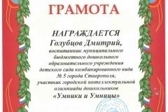 Dima Golubcov